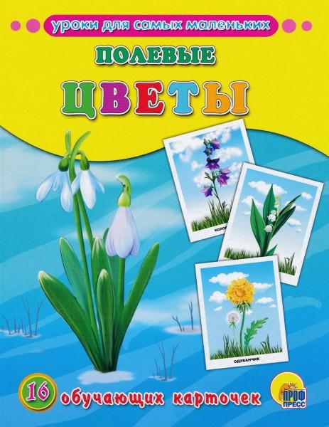 """Уроки для самых маленьких """"Полевые цветы"""""""