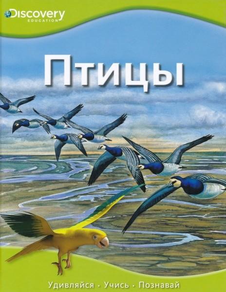Птицы. Discovery
